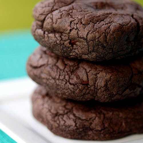 chocolate-chocolate-chip-cookie-recipe-500x500